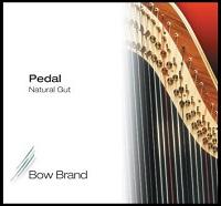 <!-- 001 -->Pedal Gut Standard Gauge