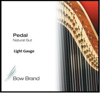 <!-- 002 -->Pedal Gut Light Gauge