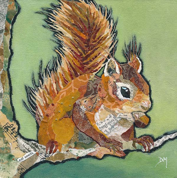 Red Squirrel and Nut - Art Print