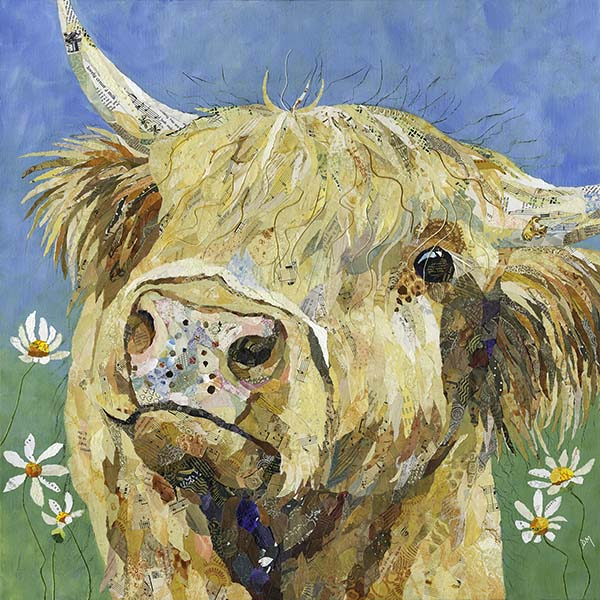 <!-- 008 -->Highland Cow Cards