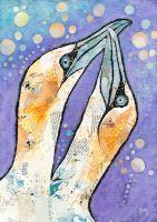 <!-- 043 -->Gannets &amp; Bubbles - Med/Large Print