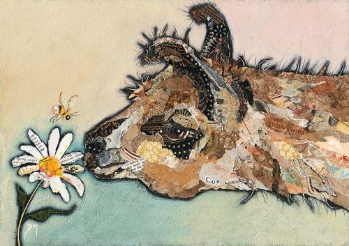 Llama Coe - Original