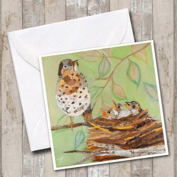 Fly Away Home - Mistle Thrush Card