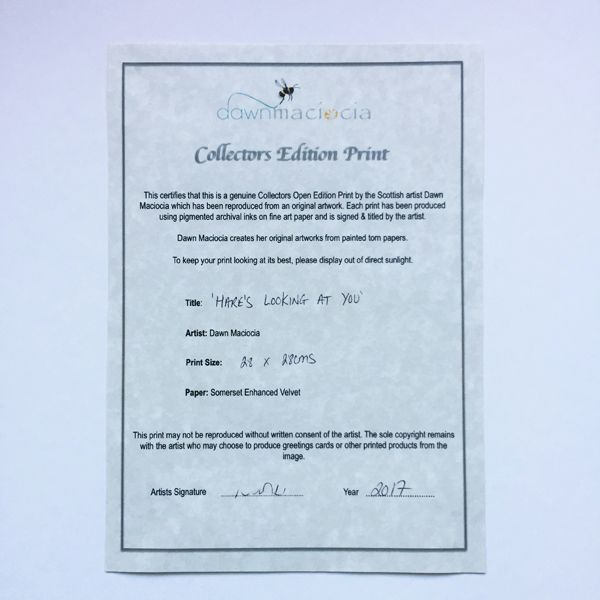 Collectors Certificate