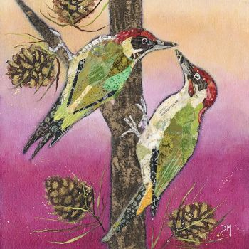 Knock Knock - Woodpecker Original
