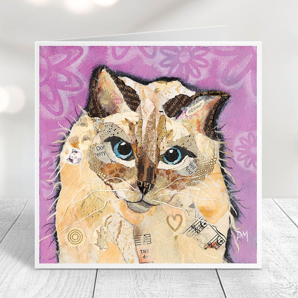 Coco - Ragdoll Cat Card