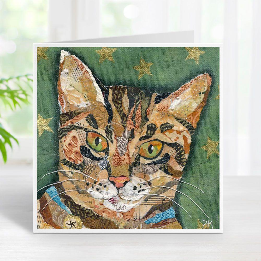 Tabby Star - Cat Card