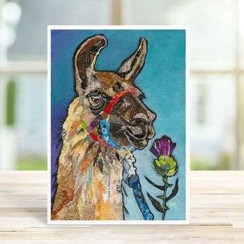 Llama Glen Card