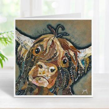 Callum - Highland Cow Card