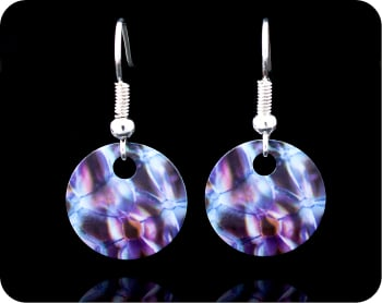 SCIENCE EARRINGS - ROSE STEM SECTION BY DARKFIELD MICROSCOPY (ER2)