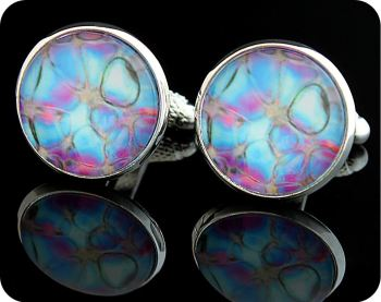 ROSE STEM SECTION (POLARISED LIGHT WITH RETARDERS) SCIENCE GIFT CUFFLINKS (CL3)