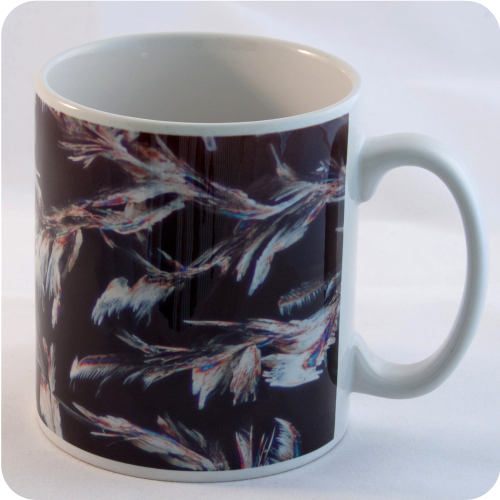 <!-- 00103 -->TOWBIN SOLUTION (POLARISED LIGHT MICROSCOPY) MUG (M20)