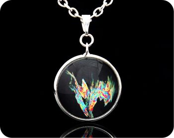 SCIENCE PENDANT - GLYCINE SDS METHANOL, POLARISED LIGHT MICROSCOPY (P14)