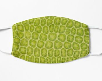 Moss leaf plant cell microscope photo face mask (FM9)