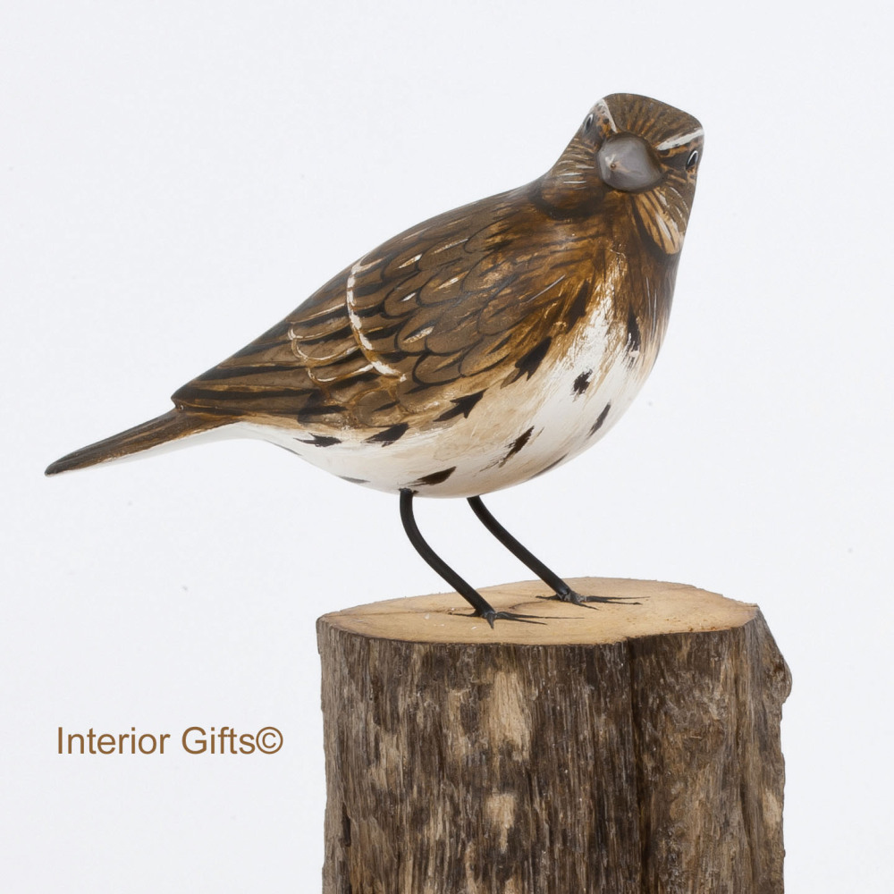 Archipelago Song Thrush Wood Carving
