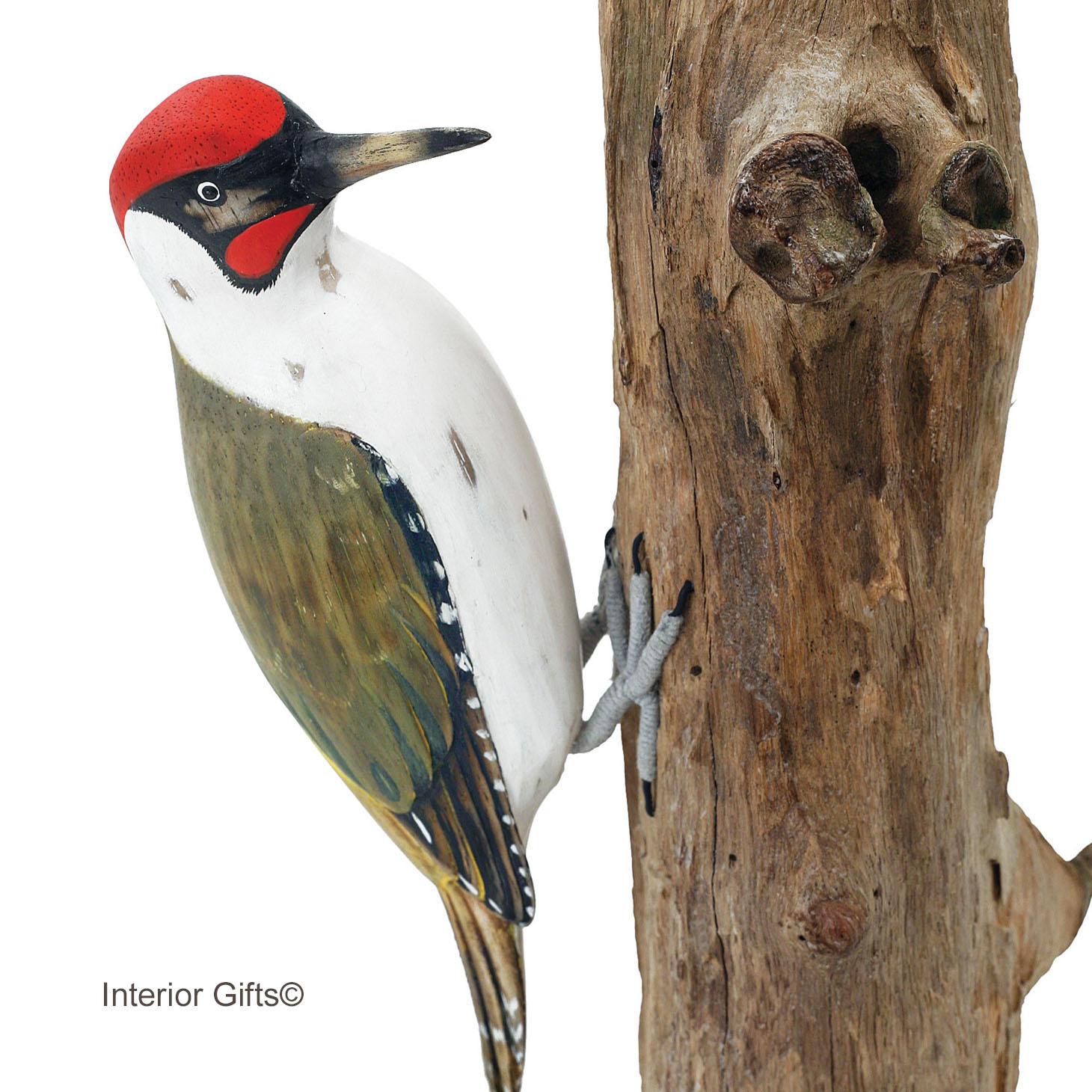 Archipelago Garden Birds