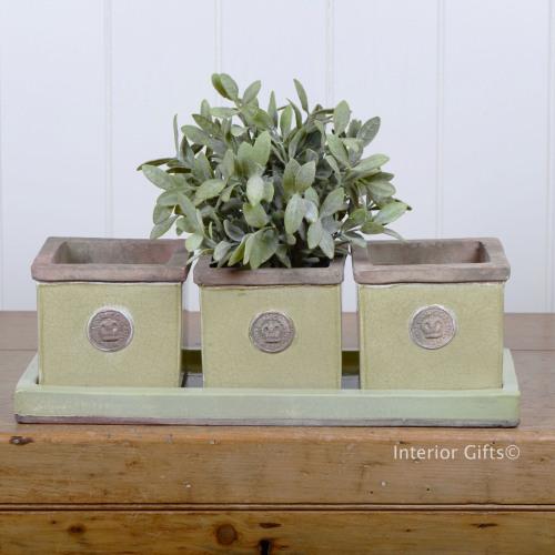 Kew Garden Herb Pots - Royal Botanic Gardens - Grape Green