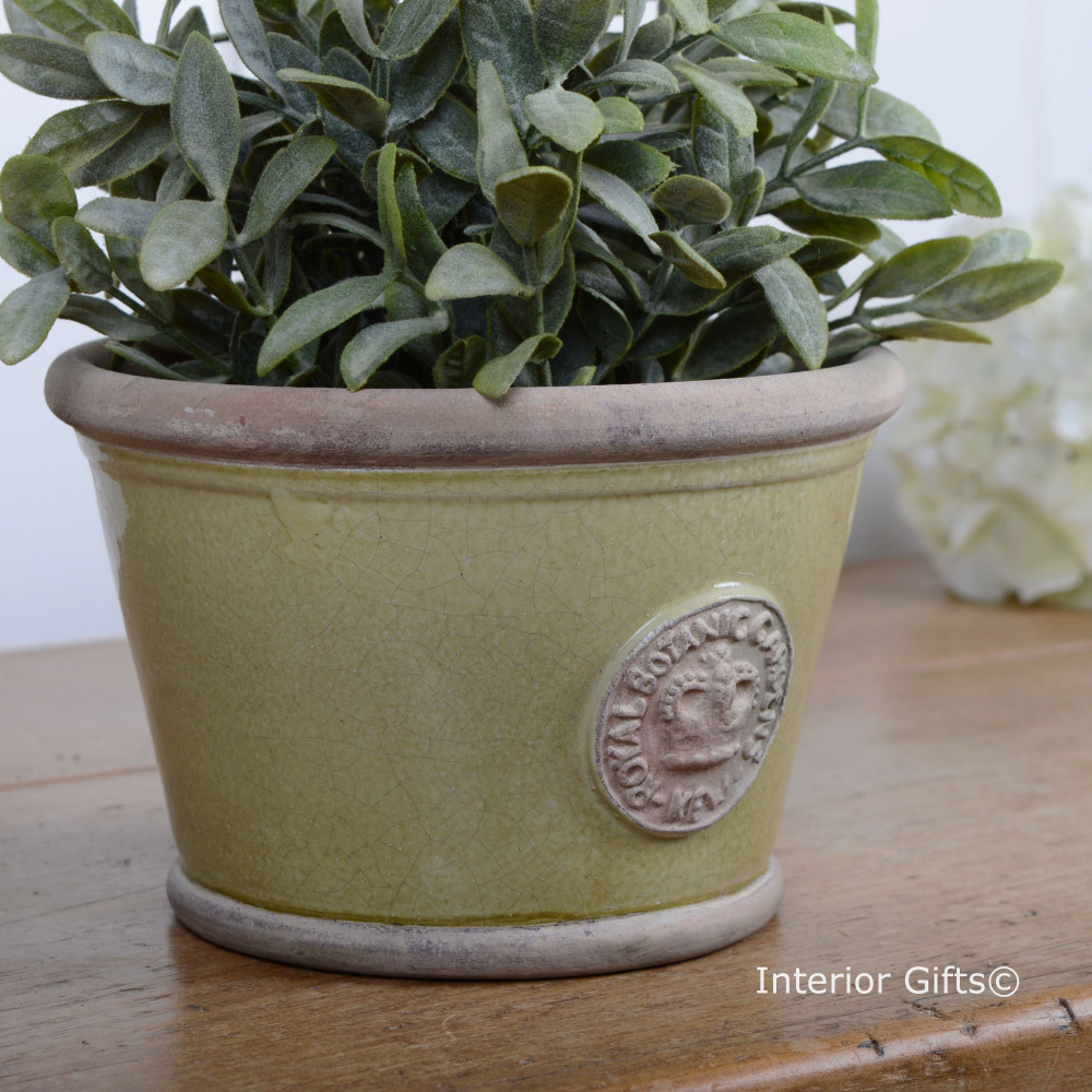 Kew Low Planter Pot in Grape Green - Royal Botanic Gardens Plant Pot - Smal