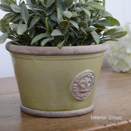 Kew Low Planter Pot in Grape Green - Royal Botanic Gardens Plant Pot - Smal