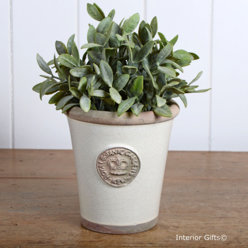 Kew Long Tom Pot in Ivory Cream - Royal Botanic Gardens Plant Pot - Small