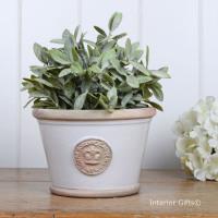 Kew Low Planter Pot Bone - Royal Botanic Gardens Plant Pot - Small