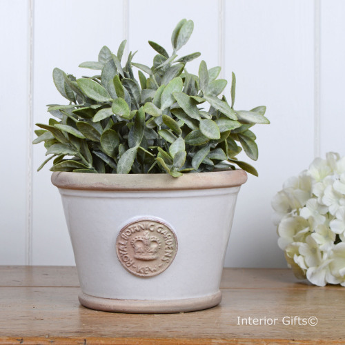 Kew Low Planter Pot in Bone - Royal Botanic Gardens Plant Pot - Small