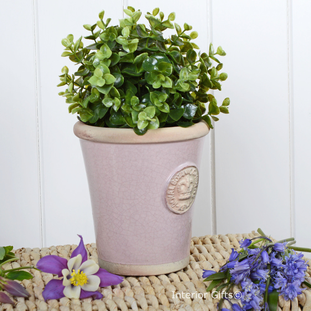Kew Garden Long Tom Small Plant Pot Powder Pink Royal