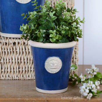 Kew Long Tom Pot in Indigo Blue - Royal Botanic Gardens Plant Pot - Small
