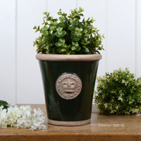 Kew Long Tom Pot in Country Green - Royal Botanic Gardens Plant Pot - Small
