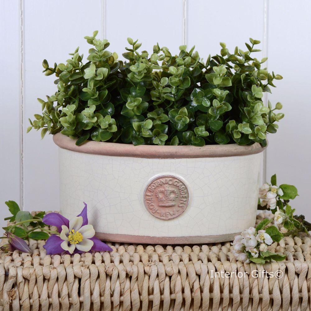 Kew Oval Planter in Ivory Cream - Royal Botanic Gardens Plant Pot - Small