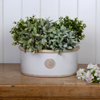Kew Oval Planter in Bone - Royal Botanic Gardens Plant Pot - Medium
