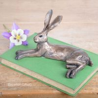 Harvey Hare Frith Bronze Sculpture by Paul Jenkins