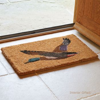 Quality Coir Duck Printed Doormat