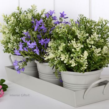 Zinc Herb Pot Set on Tray in Neutral