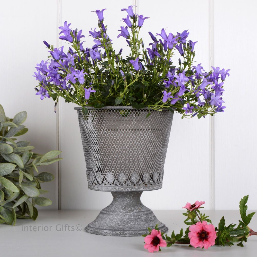 Aged zinc metal wire mesh footed planter galvanised