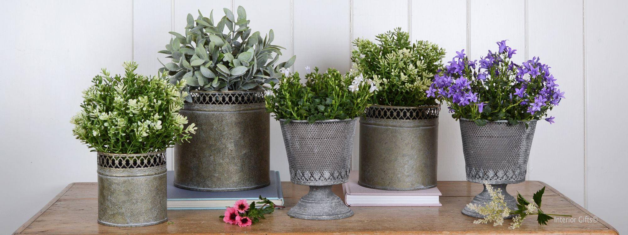Zinc Glavanised Plant Pots and Planter