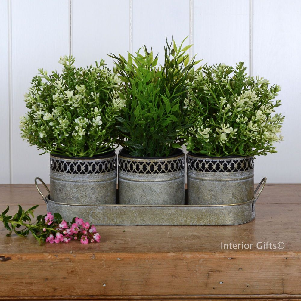 Aged Zinc Metal Herb Planters - Set of Three