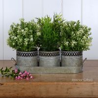 Aged Zinc 3 Metal Herb Planters with matching Tray