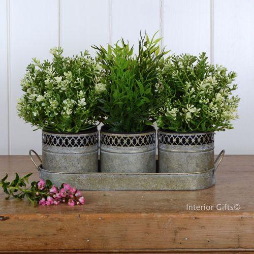 Aged Zinc Metal Herb Planters - Set of Three