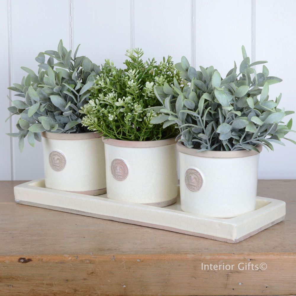 Kew Garden Set of Three Round Herb Pots & Tray - Royal Botanic Gardens - Iv