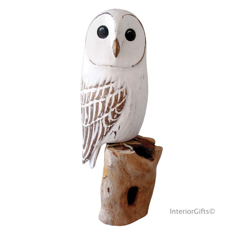 Archipelago Barn Owl Bird Wood Carving