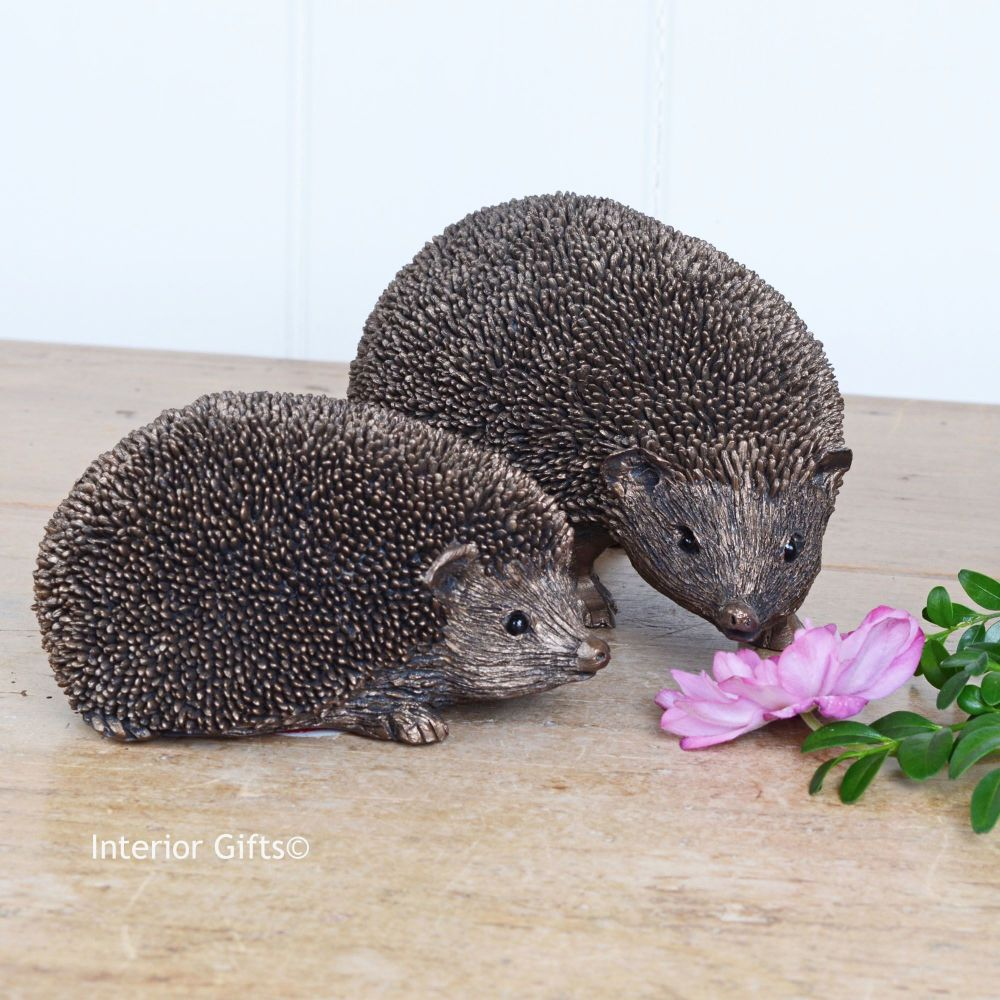 Pair of Hedgehogs - Bronze Sculptures by Thomas Meadows