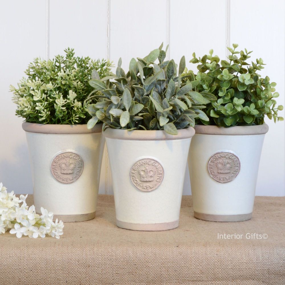 Kew Garden Set of Three Large Herb Pots - Royal Botanic Gardens - Ivory Cre