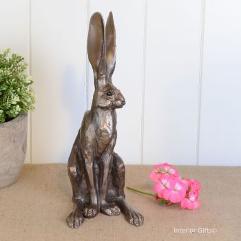 Sitting Hare Medium Frith Bronze Sculpture by Paul Jenkins