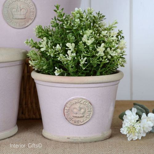 Kew Low Planter Pot Powder Pink - Royal Botanic Gardens Plant Pot - Small