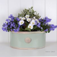 Kew Oval Planter in Chartwell Green - Royal Botanic Gardens Plant Pot - Medium