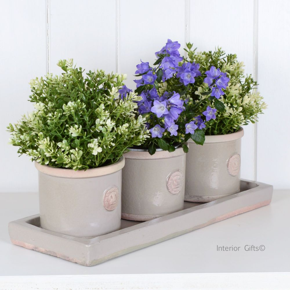 Kew Garden Set Of Herb Pots Amp Tray Round In Almond Royal