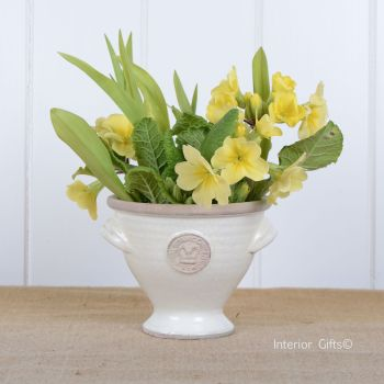 Kew Royal Botanic Gardens Mini Footed Bowl in Ivory