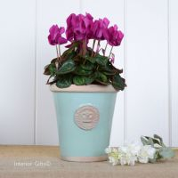 Kew Long Tom Pot in Tiffany Blue - Royal Botanic Gardens Plant Pot - Small