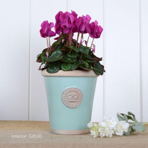 Kew Long Tom Pot in Tiffany Blue - Royal Botanic Gardens Plant Pot - Small